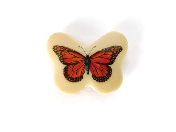 retro memo board magnets, orange butterfly