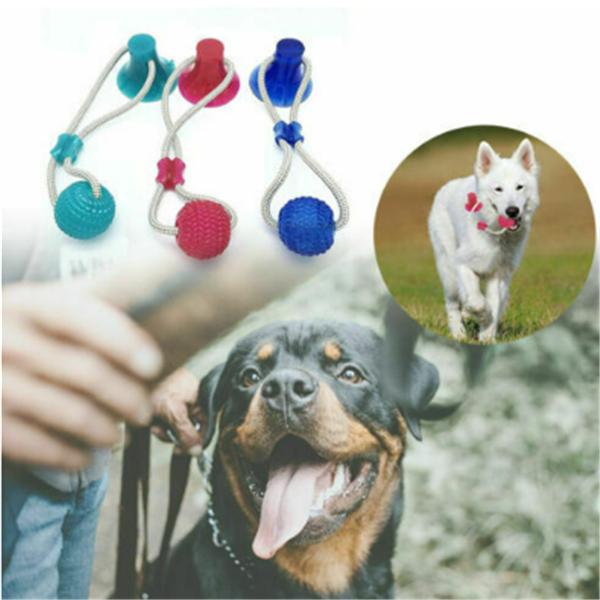 Interactive Suction Cup Dog Toy - Whisker Hut