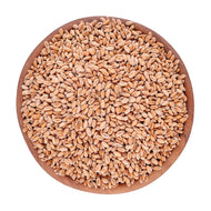 Willowvale Organics Wheat grain 3kg WV119