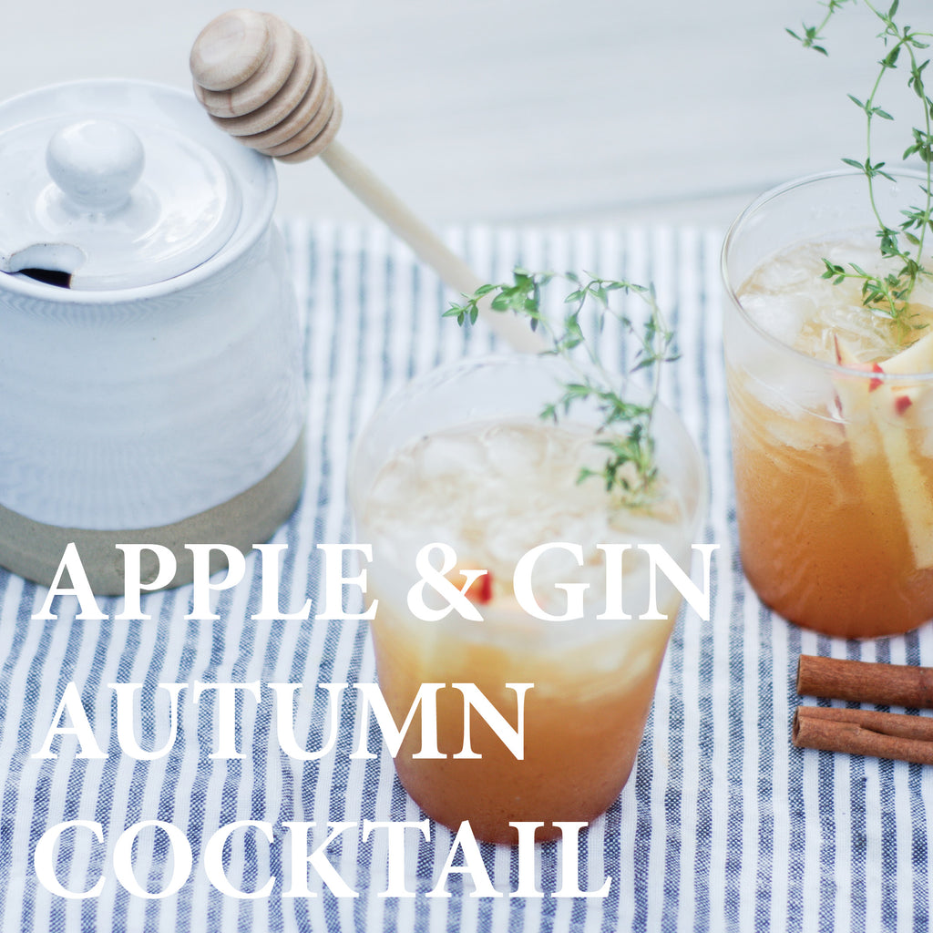 Thanksgiving Cocktail - Apple and Gin Autumn Drink