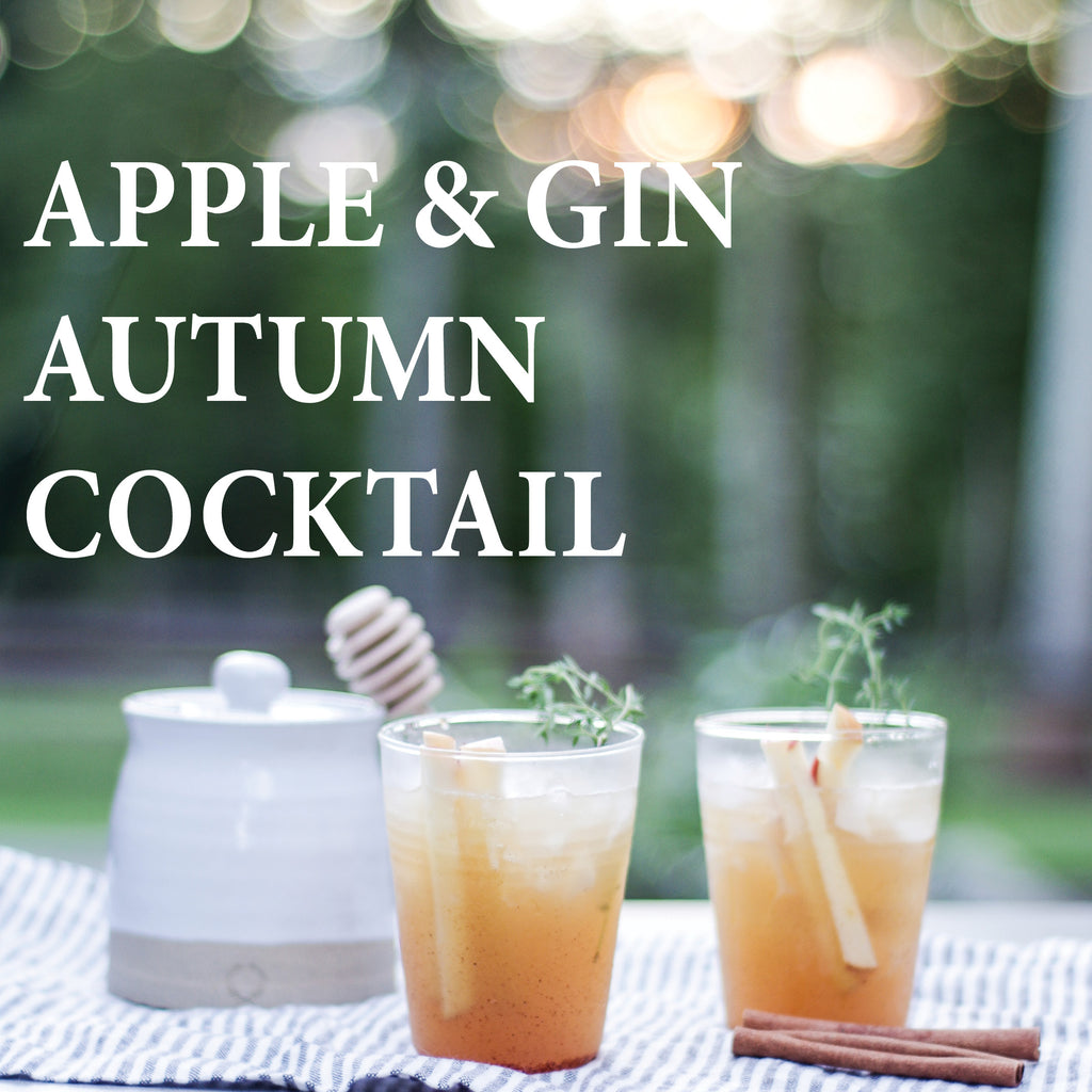Apple and Gin Autumn Cocktail - Aviation Gin  Fishes and Loaves