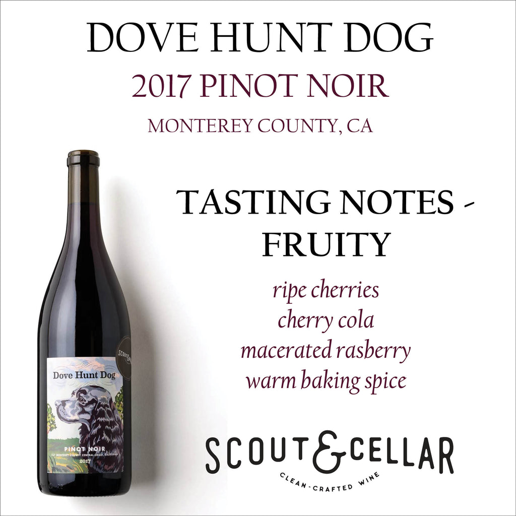 Dove Hunt Dog - Pinor Noir - Scout and Cellar