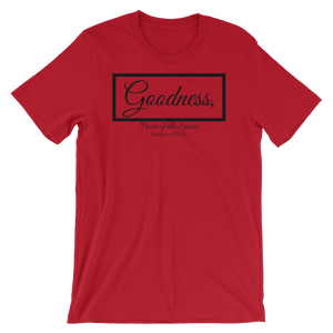 Fruit of the Spirit- Goodness Loose Fit T-Shirt