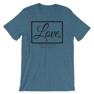 Fruit of the Spirit- Love Loose Fit T-Shirt