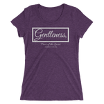 Fruit of the Spirit- Gentleness Triblend Ladies' T-shirt