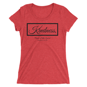 Fruit of the Spirit- Kindness Ladies' Triblend T-shirt