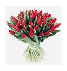 Meaning of red tulips
