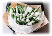 Meaning of white tulips