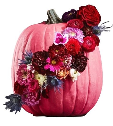 Beautiful Pink Pumpkin