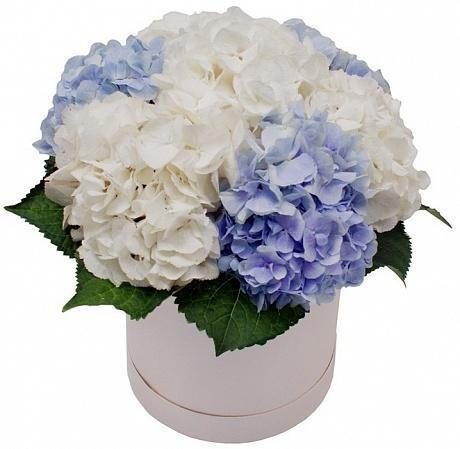 Blue and White Hat Box