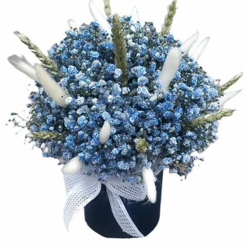 Blue Gypsophila in a Box