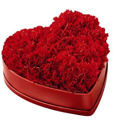 Carnation Heart Box