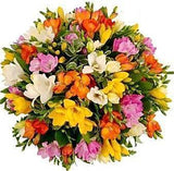 Colored Freesias Bouquet