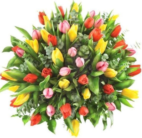 Colored Tulips with Eucalyptus