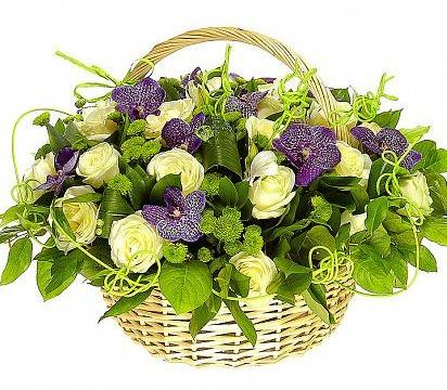 Green Land with Purple Basket