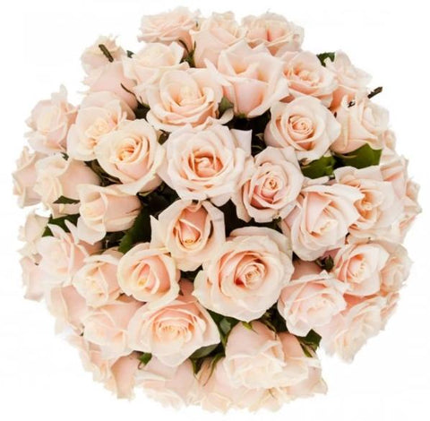 Ivory Pearls Avalanche Roses Bouquet