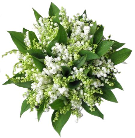 Lily of Valley Bouquet