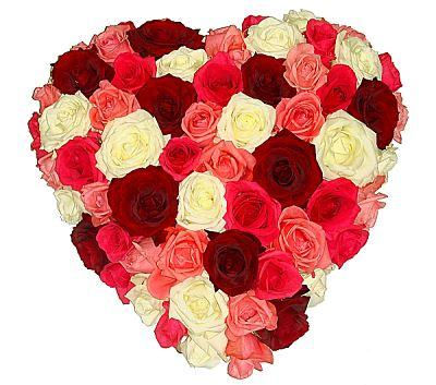 Luxury Colored Roses Heart