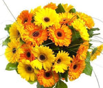 Orange & Yellow Gerbera