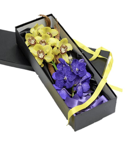 Orchids Luxury Box with Wood Decor
