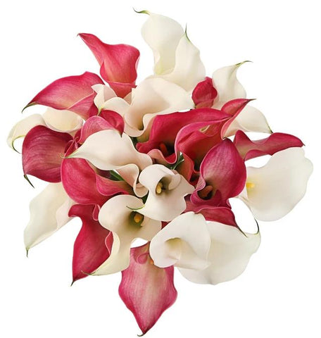 Pink and White Calla Lily Bouquet
