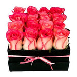 Pink Blush Roses Signature Box