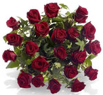 Premium Red Roses with English Ivy Bouquet