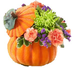 Pumpkin Twist Arrangement