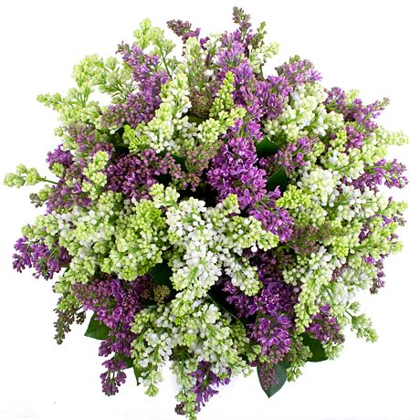 Purple and White Lilac Bouquet