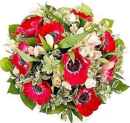Red Beautiful Anemone Bouquet