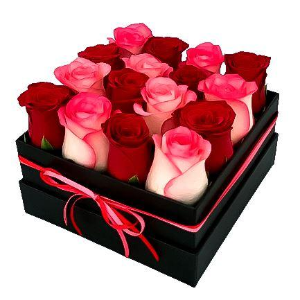 Red & Blush Roses Signature Box