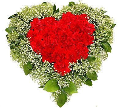 Red Carnations & Gypsophila Heart