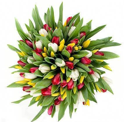 Red White and Yellow Tulips Bouquet