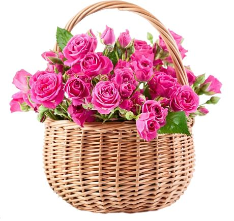 Spray Roses Basket