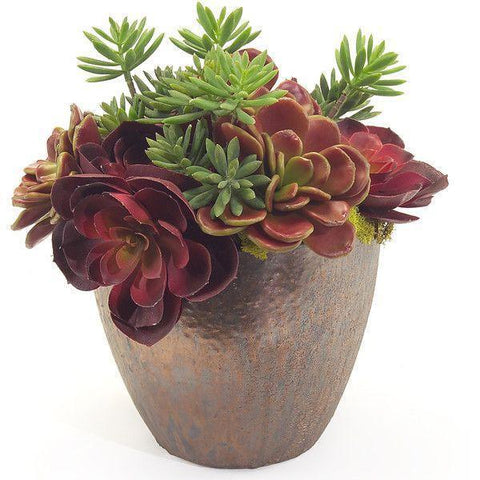Succulent Ceramic Pot