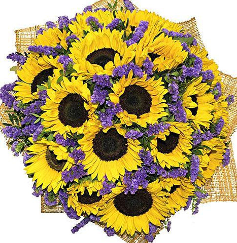 Sunflowers in Purple