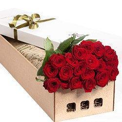 Two Dozen Red Roses Luxury Box