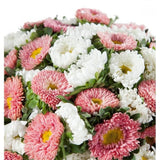 White and Pink Aster Bouquet