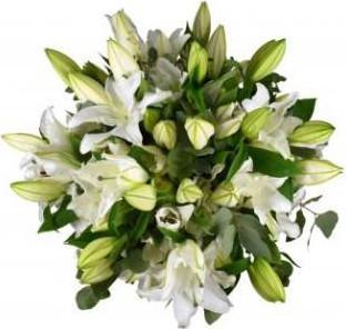 White Lily with Eucalyptus