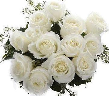 White Roses with English Ivy