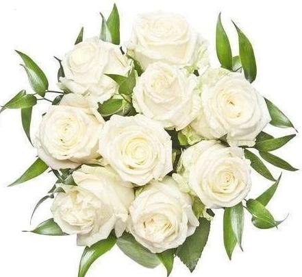 White Roses With Ruscus