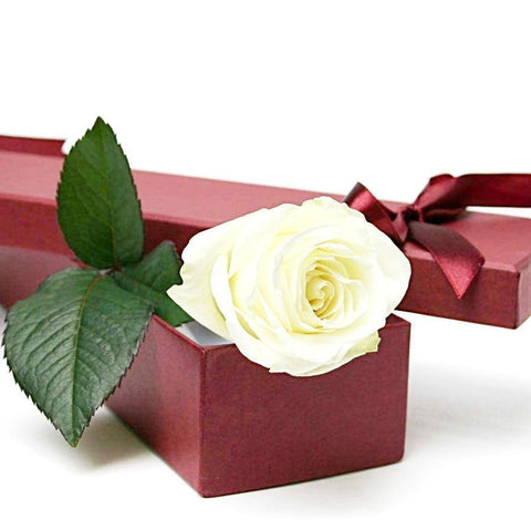White Single Rose Luxury Box