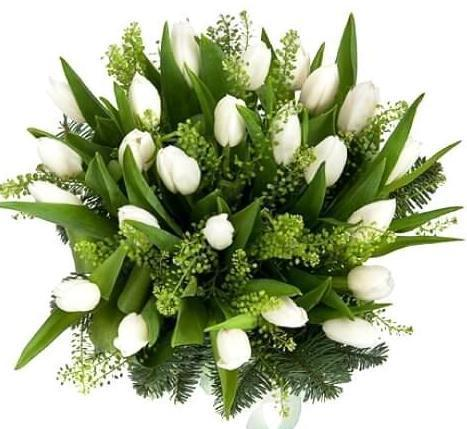 White Tulips with Green Bell