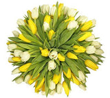 White & Yellow Tulips