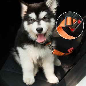 Safety Seat Belt for Dogs and Cats