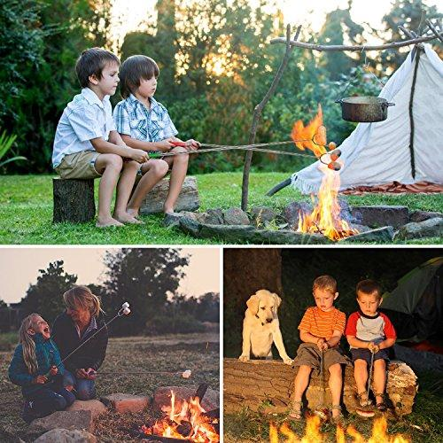 TOPLUS Marshmallow Roasting Sticks, Set Of 6 Premium Telescopic Smores Skewers Hot Dog Sticks, 38'' Outdoor Fireplace Campfire Accessories Extendable Forks Steel Camping Kit For Fire Pit, Bonfire