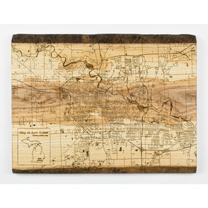 Live Edge Ann Arbor Wood Map | Ash - Blue Dot Maps