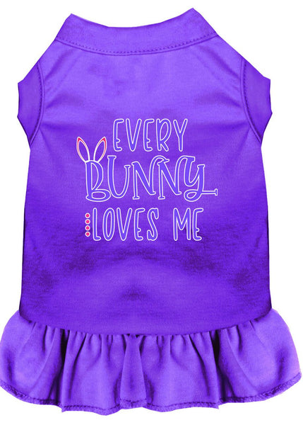Every Bunny Loves me Screen Print Dog Dress - YourStarPet