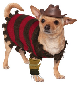 Freddy Krueger Pet Costume - YourStarPet