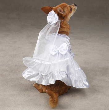 Yappily Ever After Wedding Dress - Your Star Pet